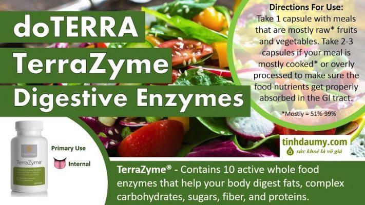 Sử dụng Men tiêu hóa DigestZen TerraZyme® - Tinhdaumy.com