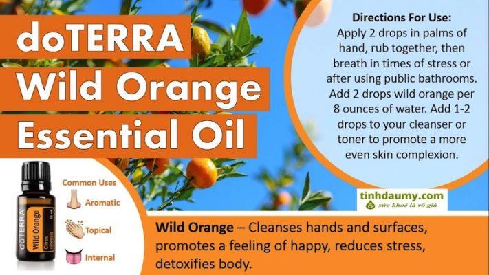 Tinh dầu Cam Rừng doterra Wild Orange _ tinhdaumy.com