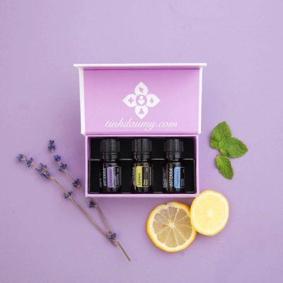 Bộ tinh dầu được ưa thích nhất: Lavender - lemon - peppermint