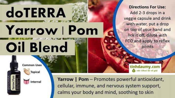 Tinh dầu Cúc vạn diệp và dầu Lựu Yarrow Pom